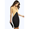 Dixie Colour Block Bodycon Dress