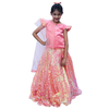 Indian Wedding Baby Lehenga for girls